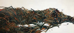 "Nancy Crawford ""Seaweed"" Oil Painting 36 x 48"